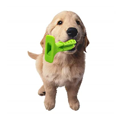 Mustbe Strong Perros Cepillado Palo, eficaz Cepillo de Dientes Perros Mascotas Cuidado bucal Goma Masticar