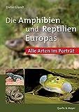 Die Amphibien und Reptilien Europas: Alle Arten im Porträt