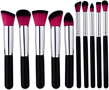 10-Pieces Qunanen Professional Makeup Brushes