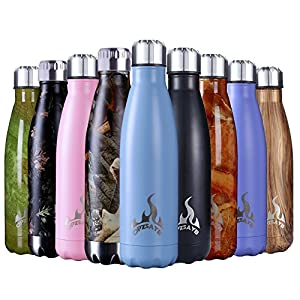 Insulated Water Bottle, 17 Oz Stainless Steel Double Wall Vacuum Sports Drink Bottles, Leak- proof and No Sweating Cola Shape Travel Bottles, Keeps Drinks Cold & Hot for 24 Hours (Black Leaf1)