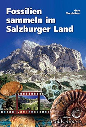 fossilien-sammeln-im-salzburger-land