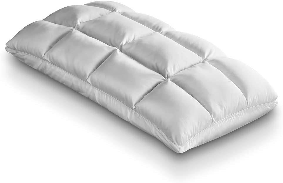 Purecare TempSync SoftCell Pillow, Vented Memory Foam and Down Alternative, Queen (PCTS801)