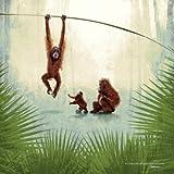 Monkey Jungle Safari Children's Nursery Print