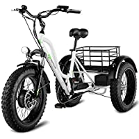 """Goplus Electric Trike 20"""" Fat Tire 500W Electric Tricycle for Adults 48V 10AH Lithium Battery 3-Wheeled Electric Bike with LCD Display"""