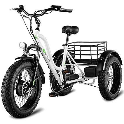 Opinion motors for three wheel adult trike