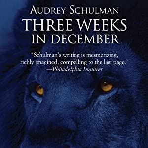 Three Weeks in December Audiobook