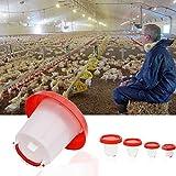 Tangc 1.5L/2.5L/4L/6L Chicken Feeder Drinker