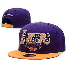 Los Angeles Lakers NBA 2016 Reverse Team Color Stretch Fit Cap Purple Adjustable Hat