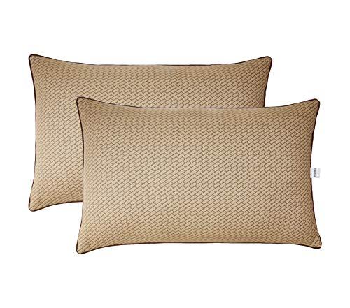 Amazon Brand - Solimo 2-Piece Premium Bed Pillow Set (B081NZXYXW) Amazon Price History, Amazon Price Tracker