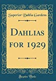 Amazon / Forgotten Books: Dahlias for 1929 Classic Reprint (Superior Dahlia Gardens)