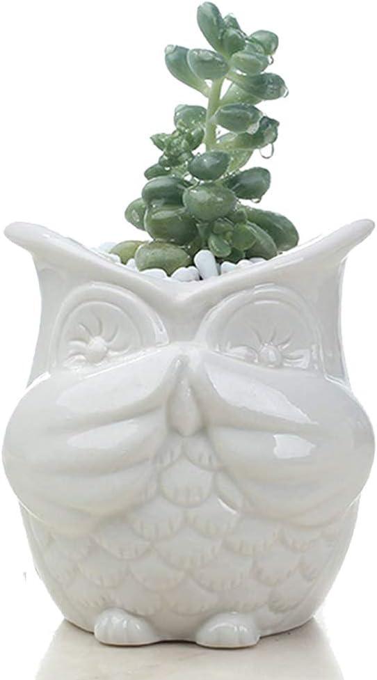 Owl-Shaped Ceramic Succulent Flower Pot, Multifunctional Bonsai vase, Creative Cactus Flower Pot with Drain Hole-Home Office Garden Decoration