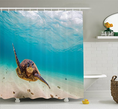 (Ambesonne Hawaiian Decorations Collection, Underwater Scuba Diving Sea Turtle Nature Animal Swimming Wildlife Theme, Polyester Fabric Bathroom Shower Curtain Set with Hooks, Blue Beige)