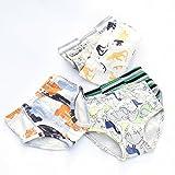 Closecret Kids Series Soft Cotton Underwear Little Boys Assorted Briefs(Pack of 6)