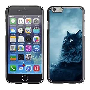 PC/Aluminum Funda Carcasa protectora para Apple Iphone 6 Plus 5.5 Black Persian Cat Nebelung Longhair / JUSTGO PHONE PROTECTOR