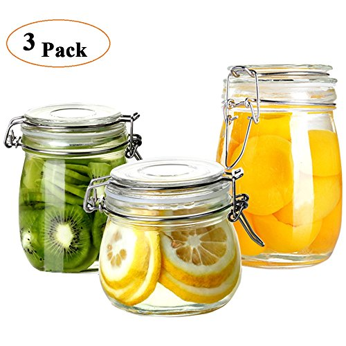 Folinstall 3-Piece (17oz, 24oz and 34oz) Wide Mouth Airtight Glass Preserving Jars with Clip Top Lids - The Round Terrarium Jars Perfect for Storing Coffee, Sugar, Flour, juice or Sweets