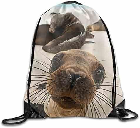 40fcf3f18552 Shopping Beige or Blacks - 4 Stars & Up - Gym Bags - Luggage ...