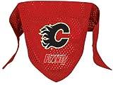 NHL Calgary Flames Pet Bandana, Team Color, Small