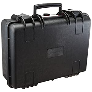 AmazonBasics Hard Camera Case - Medium