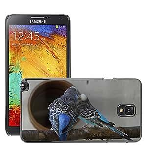 GoGoMobile Etui Housse Coque de Protection Cover Rigide pour // M00124899 Periquitos Periquitos Mascotas // Samsung Galaxy Note 3 III N9000 N9002 N9005