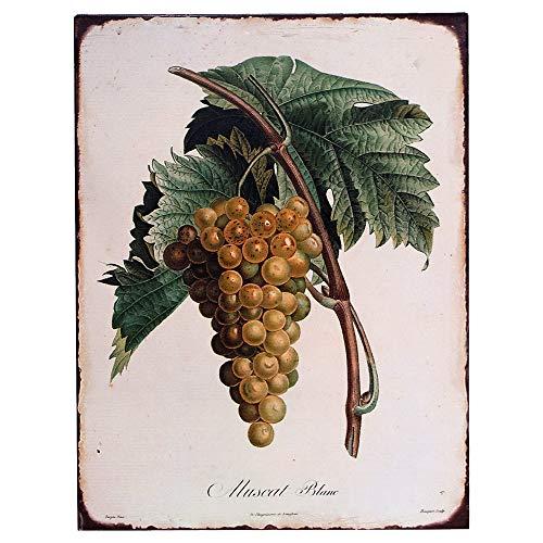 Barnyard Designs Vintage Botanical Grapes Tin Sign, Primitive Country Farmhouse Home Decor Sign 10