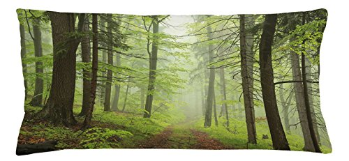 Chair Alder Outdoor (Lunarable Outdoor Throw Pillow Cushion Cover, Trail Trough Foggy Alders Beeches Oaks Coniferous Grove Hiking Theme, Decorative Square Accent Pillow Case, 36 X 16 Inches, Pale Green Pale Yellow)