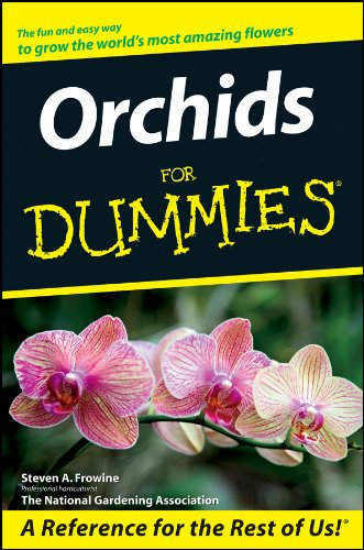 orchids-for-dummies
