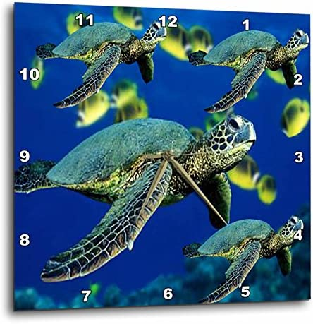 3dRose DPP_26849_3 Sea Turtles-Wall Clock, 15 by 15-Inch