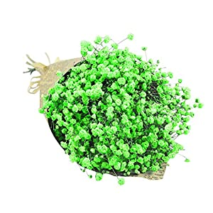 Quaanti Babys Breath Artificial Flowers, Gypsophila Natural Dried Flower Sky Star,Real Touch Flowers for Wedding Party Home Garden Decoration 37