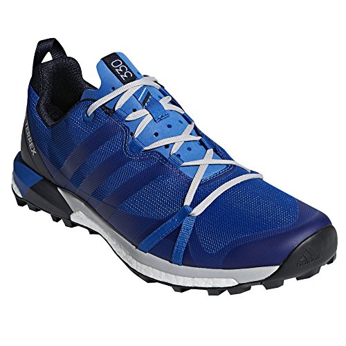 Adidas Outdoor Mens Terrex Agravic Collegiate Navy / Blue Beauty / Grey Two 15 D Us