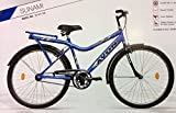 Avon Sunami Bicycle (Blue/ Black, 26T)