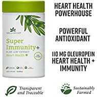 WellGrove Super Immunity Olive Leaf Extract + Heart Health Capsules | 1,100mg Olive Leaf | Natural, Traceable | Immune, Heart Health, Antioxidant Supplement (120 Capsules)
