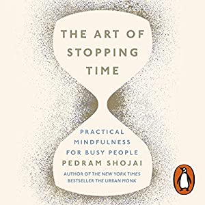 The Art of Stopping Time Audiobook