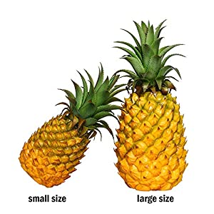 xdobo Realistic Artificial Fruits Fake Pineapple for Display High Simulation Artificial Dummy Fruits Vegetables Studio Photo Prop DIY Decoration Accessories Artificial Food Toys 2