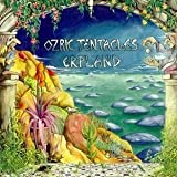 Erpland by Ozric Tentacles (2010-05-18)