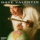 Valentin, Dave World on a String Mainstream Jazz