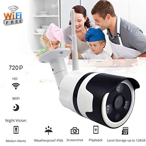 Beyonds 720P WiFi IP Security Camera Wireless Outdoor/Indoor 60