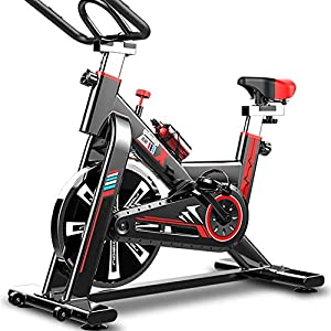 51Ot XoiVgL. SS300 YOVYO Cyclette da Interni Verticale, Allenamento Spin Bike Cyclette, Sedile E Braccioli Regolabili, Regolazione della Resistenza Libera, Struttura Triangolare Stabile, Schermo LCD