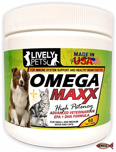 Omega 3 for Dogs - High Potency Omega 3 Fish Oil for Dogs and Cats, EPA DHA Soft Chews - Salmon Oil for Dogs Immune Brain Heart Hip Joint for Dogs Fish Oil Supplements for Dogs Dog Treats