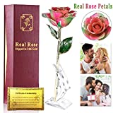 Real Rose 24K Gold Dipped Forever Rose Gifts Artificial Flowers Romantic for Her Women Wife Girlfriend Valentines Day Anniversary Wedding Proposal Dating Holiday Birthday Party,Golden 24k-Rainbow