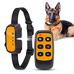 Queenmew 2 in 1 Anti Bark Dog Training Collar with Remote Control,Stop Dogs Excessive Barking Device with Beep… Health and Household