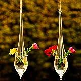Bluelover Forme De Goutte D'Eau Suspendue Verre Vase Pot De Fleur Jardin Hydroponique De Plantes