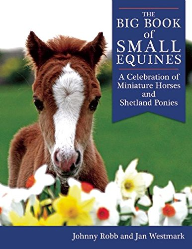 The Big Book of Small Equines: A Celebration of Miniature Horses and Shetland Ponies (Baseballs For Shetland)