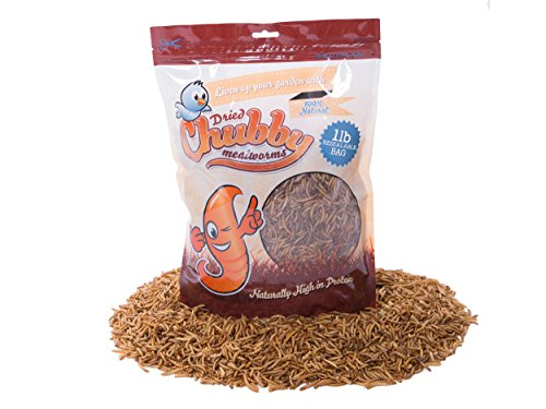 Chubby-Mealworms-Bulk-Dried-Mealworms-for-Wild-Birds-Chickens-etc