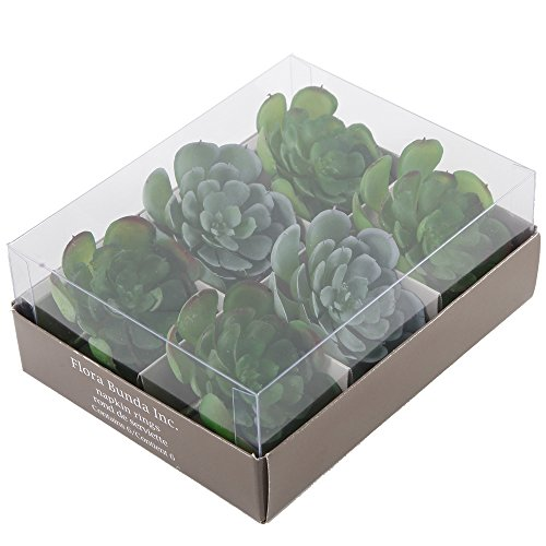 - Flora Bunda Set of 6 Succulent Napkin Ring
