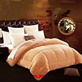 Comforters Brown Feather Double Bedroom Winter Thick Quilts (Size : 150200cm)