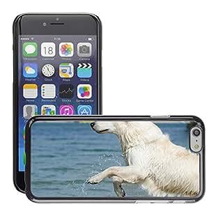 """Etui Housse Coque de Protection Cover Rigide pour // M00108286 Oro Jump Retriever En El Agua // Apple iPhone 6 4.7"""""""