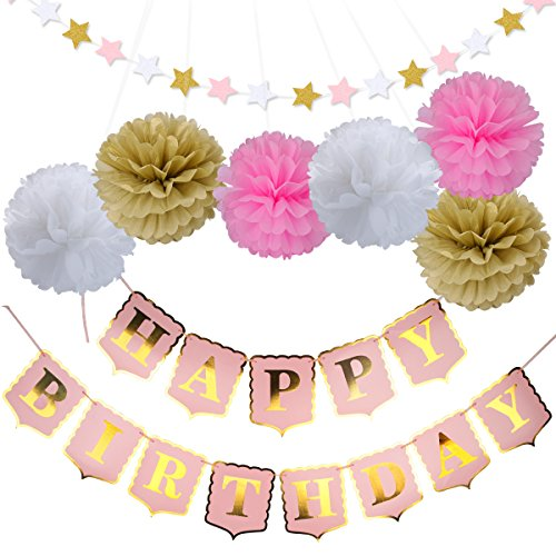 Happy Birthday Banner PomPom Decoration,Pink Happy Birthday Banners,Tissue Paper Pom Poms Flower and Twinkle Star Banners- Birthday Decorations - 21st - 30th - 40th - 50th Birthday Party (Twinkle Birthday)