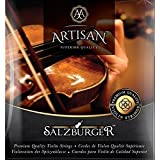 Artisan Violin Strings Premium Quality - For 4 4 or 3 4 Size. Full set: GDAE. Stainless Steel Ball End. Flat wound E string eliminates finger noise. Warmest Tones & Unmatched Durability