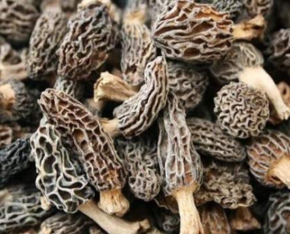Dried Morel Mushrooms (1 lb.) - Buy Online in UAE.