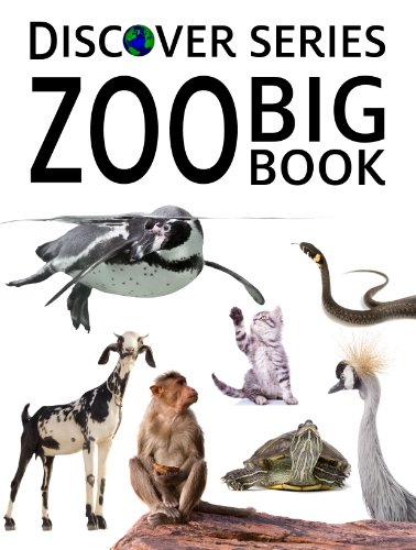 (Zoo Big Book (5 Discover Series Picture Books for Children in)